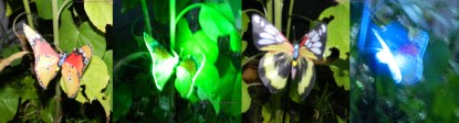 Butterfly Solar Stake Lights