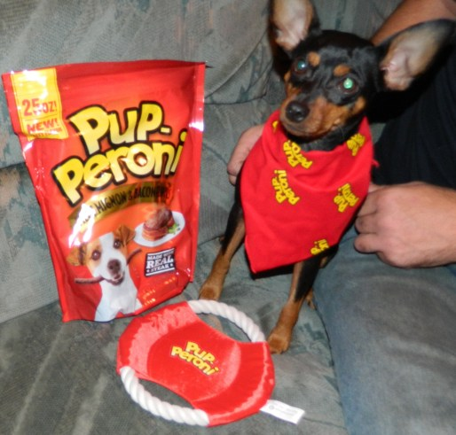 Buttercup with Pup-Peroni products