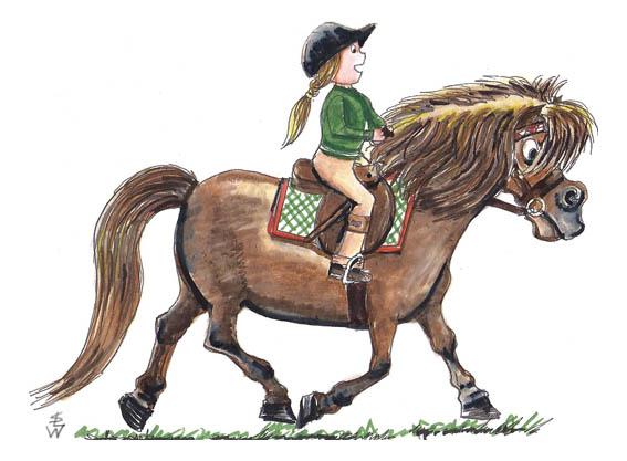 Pony marker-test