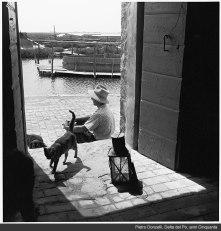 Pietro Donzelli, Delta del Po, Anni 50