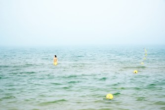 I pesci posssono volare (7)