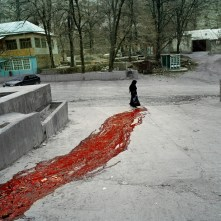 "Republic of Dagestan, Russia 2009. In the village of Gimri during the sacrifice of a bull. Between 2nd and 5th of January 2006 in the village which was also the native village of ""Imam Shamil"", was put into a ferocious offensive of 3000 the Russian government forces against a group of 30 armed rebels, following the attempted murder of Assistant Commissioner of Ministry of Interior. The village has been blocked by federal forces until the end of 2008 and have been numerous cases of abuse, torture and violation of human rights in the village."