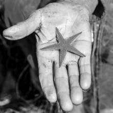 Anna Maria gives a starfish