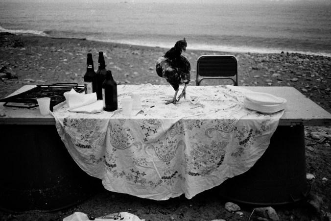 nella-spiaggia-della%cc%82e-arenella-la-festa-eie-finita-palermo-1986
