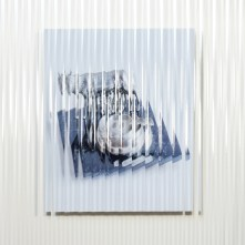 Giuseppe De Mattia, Dispositivo per non vedere bene - Lupa #2, Bologna 2017