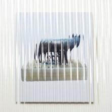 Giuseppe De Mattia, Dispositivo per non vedere bene - Lupa #3_Bologna 2017