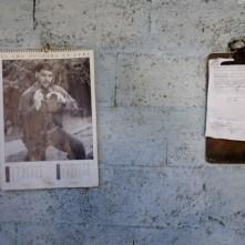 Fidel Che (Sara)-20