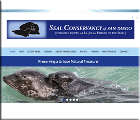 Seal Conservancy of San Diego - Wordpress Websites and Training - Sara Ohara