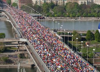Viyana Maratonu