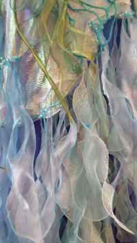 1 Jennie Abbott_Rainforest Reflections_closeup2