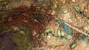 18 Marilyn Farrow_Gumleaves_closeup leaf