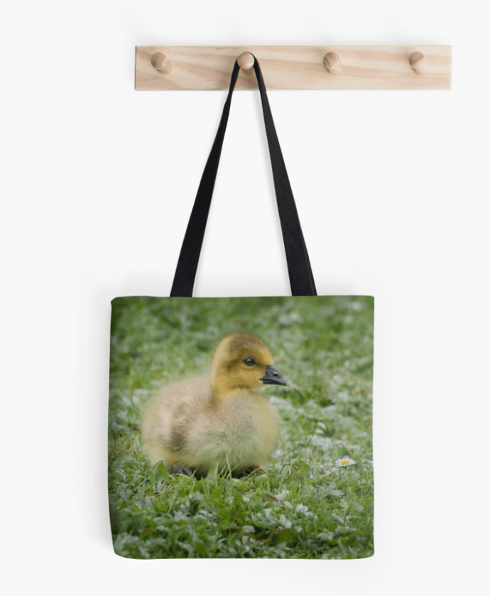 photograph of a baby goose on a bag