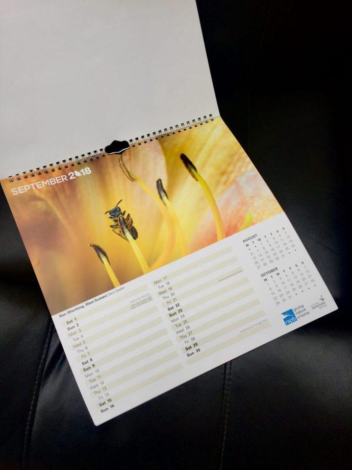 September in the 2018 RSPB calendar