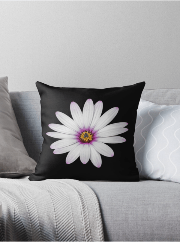 African Daisy Cushion