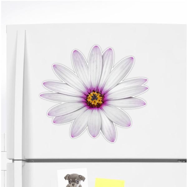 African Daisy Stickers
