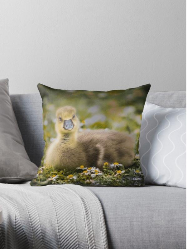 gosling cushions