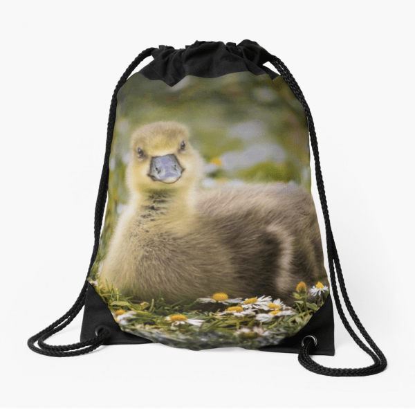 Gosling drawstring bag