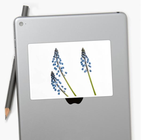 grape hyacinth flower stickers - medium