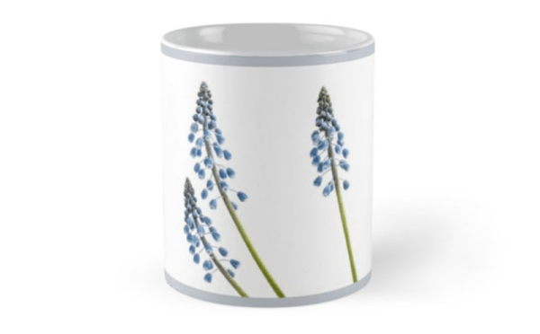 Grape Hyacinth Flower mugs - front
