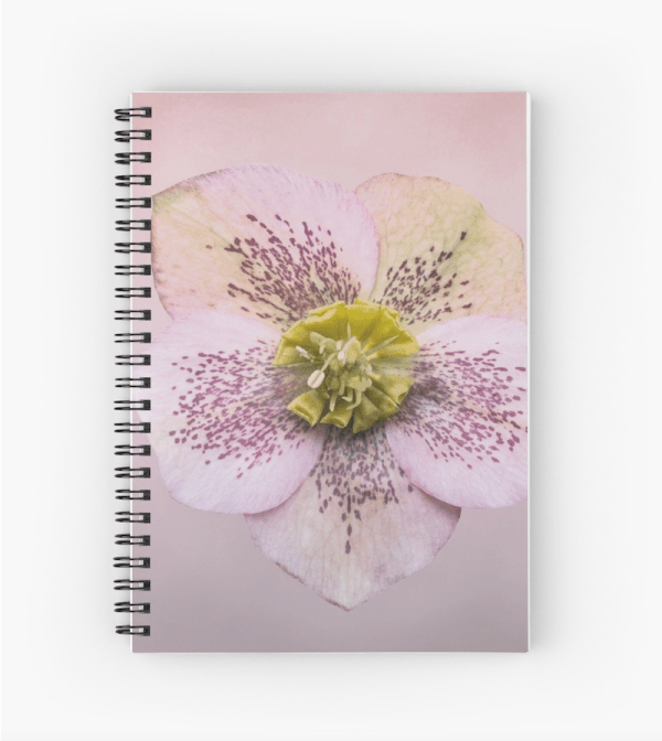 Hellebores flower Notebook