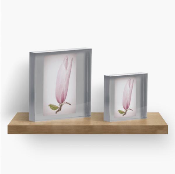 Magnolia flower acrylic block