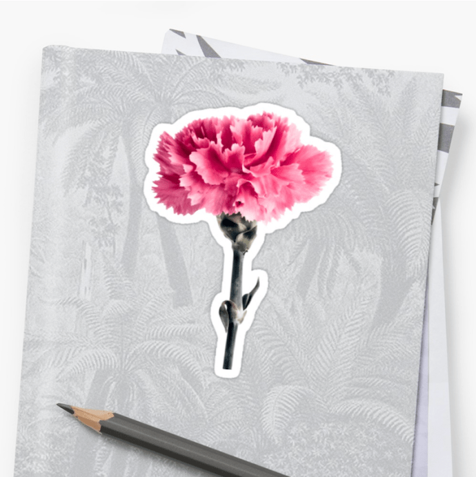 Carnation Flower photo - Stickers small
