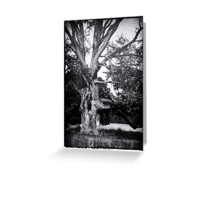 Spooky Tree Greetings Card