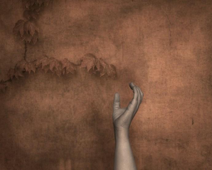 A single hand reaching up