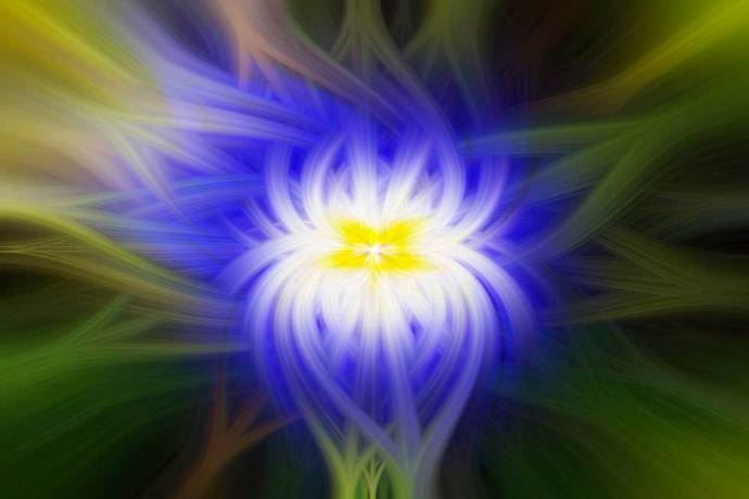 Terrific twirls - Abstract image of a flower