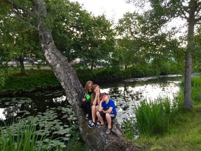 Mina barn provsitter trädet där deras morfar - min pappa - snörade på sig skridskorna som barn.
