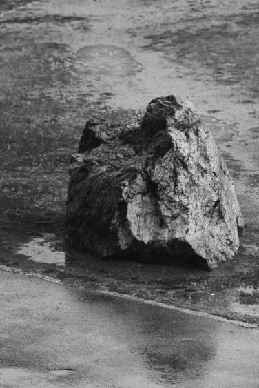 En sten på marken ska man inte förkasta; den har också en himmel, bara man ger den tid. (ur Poesi på väg, SL 2006)