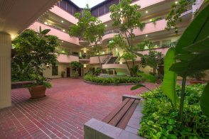 Spector Office Building Courtyards