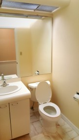 suite700-bathroom