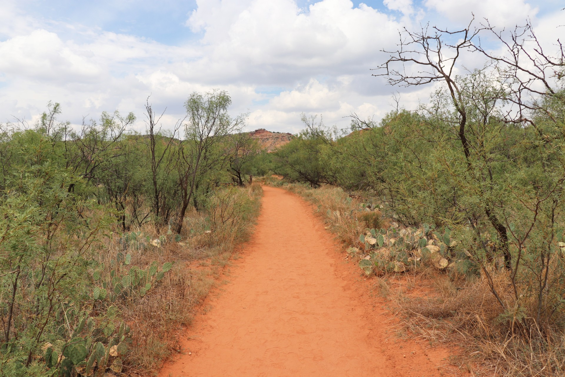 Palo Duro Canyon State Park Lighthouse Trail Photographed By Sara Turbyfill In Texas.