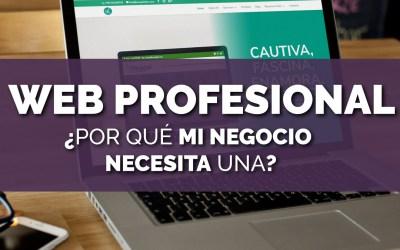 ¿Por qué es importante tener una web profesional?