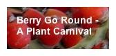 Berry Go Round Badge