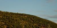 Medjugorje, Esaltazione della Croce 2014: veduta del Podbrdo – Foto di Sardegna Terra di Pace – Tutti i diritti riservati