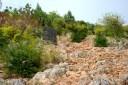 Medjugorje, Esaltazione della Croce 2016: Inizio della salita sul Podbrdo – Foto di Sardegna Terra di pace – Tutti i diritti riservati