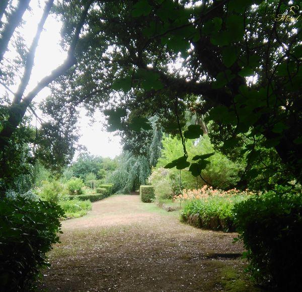 Il verde parco Aymerich