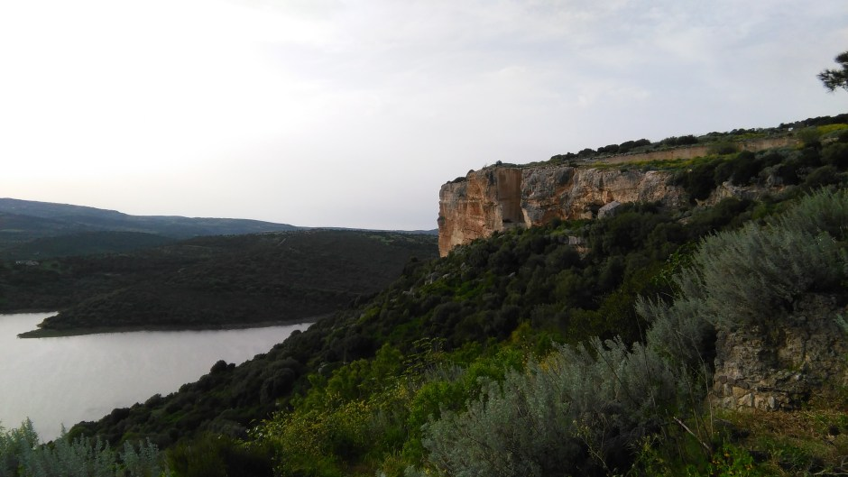 Monteleone Roccadoria - Panorama