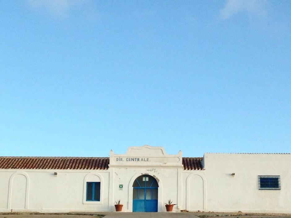 Asinara experience