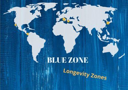 Bluezone2-e