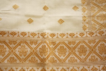 Note the stitched on border and the continuous pallu