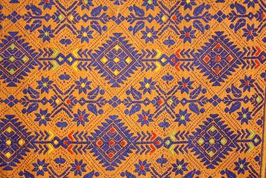 A close up of the pallu