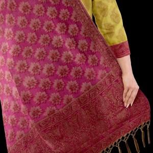 Banarasi Suits