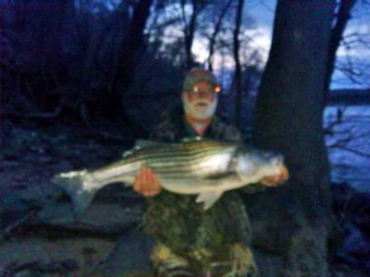 Sarges Bait and Tackle Chesapeake Bay Fishing Report3
