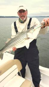 Sarges Bait and Tackle Chesapeake Bay Fishing Report - Striper