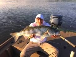 Sarge's Bait and Tackle Chesapeake Bay Fishing Report - Stripers