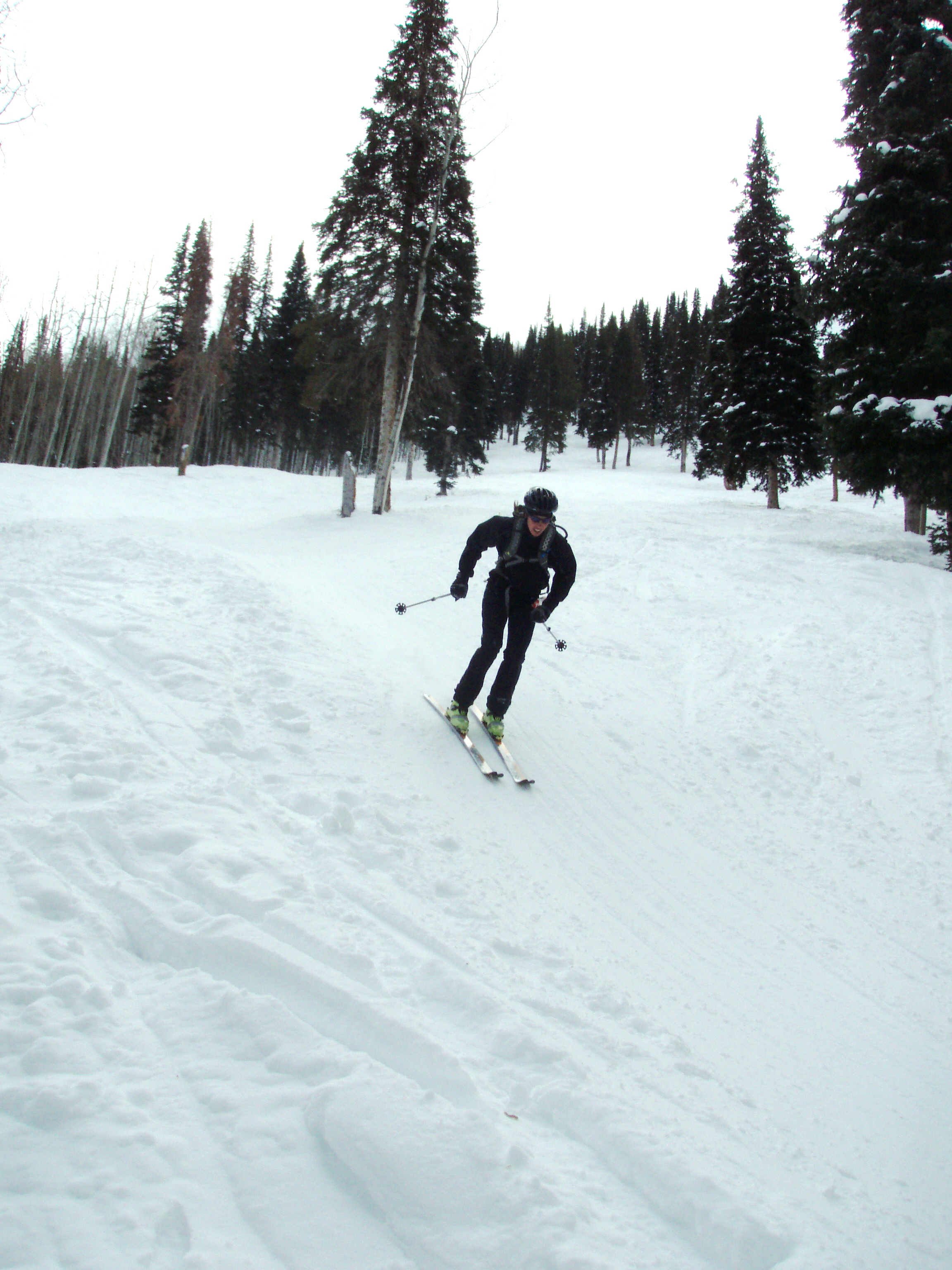 The downhill skiing hurts more than the uphill in these races.