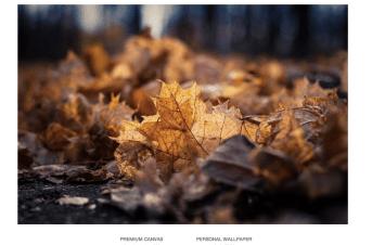 Captura de pantalla 2014-09-02 a la(s) 10.54.51